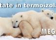 Calitate in termoizolatie